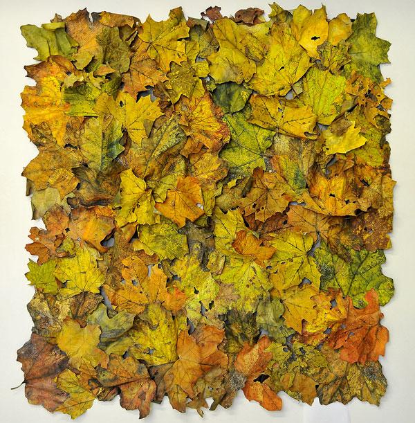 Forest Floor, Var. 2 by Barbara Schneider